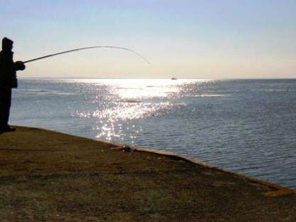 Законы рыболова