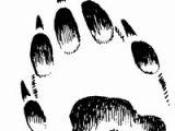 Изучение зверей по следам