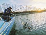 Сход рыбы с крючка